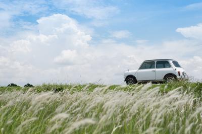 The MINI Cooper. A car so influential it defined a decade…